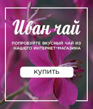 Иван-чай купить в интернет магазине Кукуйка