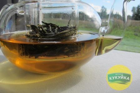 Зеленый листовой Иван-чай заваренный из Кукуйки