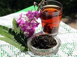 Как правильно называется таинственный Иван-чай?
