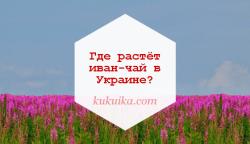 Где растёт иван-чай в Украине?
