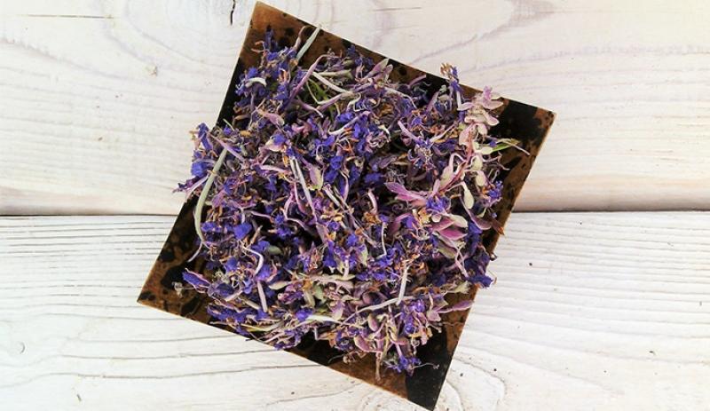 Иван-чай ферментированный: лечебные свойства и противопоказания