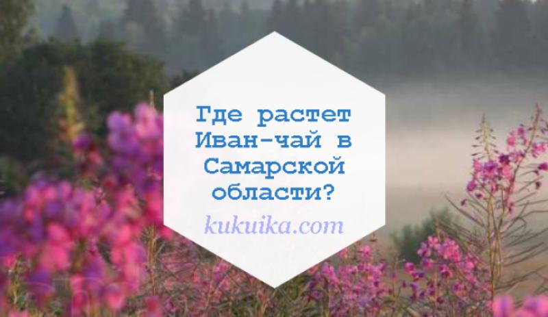 Где растет Иван-чай в Самарской области?