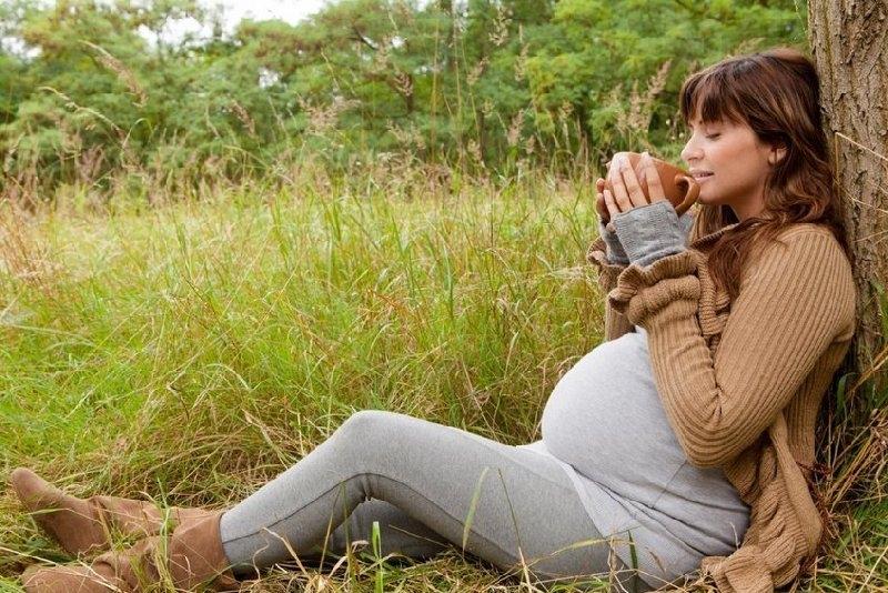 Иван-чай при беременности польза или вред?